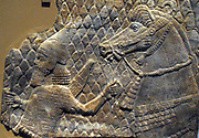 Assyrian relief showing a horse led by an archer. From the Southwest palace of Sennacherib (704-681 BC), Nineveh, Iraq.