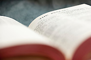 The Book of Psalms in the Bible. Missoula Photographer