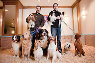 20090204_NYT_DOGS