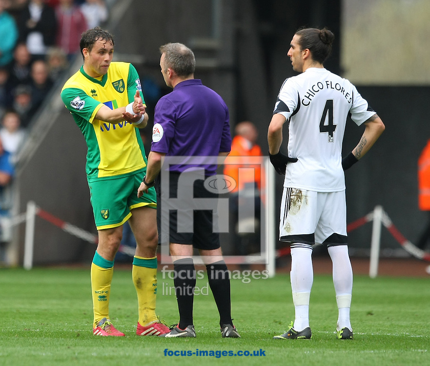 Johan Elmander of Norwich makes is point to Referee Jon Moss during the Barclays Premier League match at the Liberty Stadium, Swansea<br /> Picture by Paul Chesterton/Focus Images Ltd +44 7904 640267<br /> 29/03/2014
