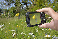 Using a compact camera