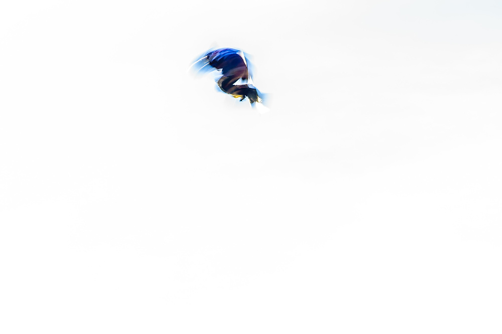 Oslo, Norway. 26th February, 2016<br />