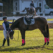 Bridgette Miller and Tsunami III at the Red Hills International Horse Trials in Tallahassee, Florida.