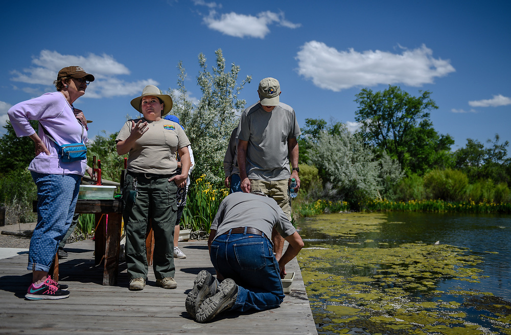 rer050817c/NM&amp;West/May 8, 2017/Albuquerque Journal<br /> recent graduates of the Rio Grande Nature Center&rsquo;s volunteer program began training at the discovery pond on how to best teach student of all ages how to identify aquatic micro invertebrates including species such as larva that eventually turns into a dragonfly, and  tadpoles. <br /> Roberto E. Rosales/Albuquerque Journal