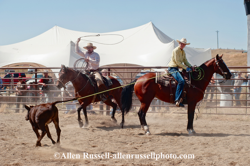 Wilsall Ranch Rodeo, Montana, Team Branding, Knockem Flat Cattle Co Team, Milee Malone, Justin O'Hair