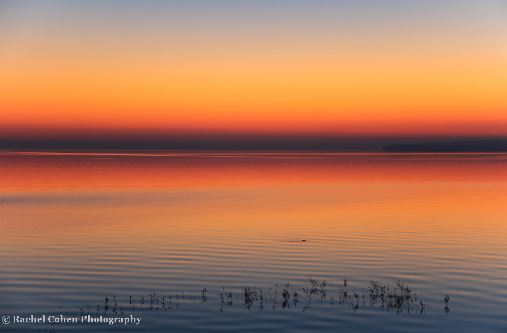 &quot;Peace at Sunrise&quot;<br /> <br /> Soothing pastel hued sunrise on Lake Huron in Michigan's Upper Peninsula!!<br /> <br /> The Great Lakes by Rachel Cohen