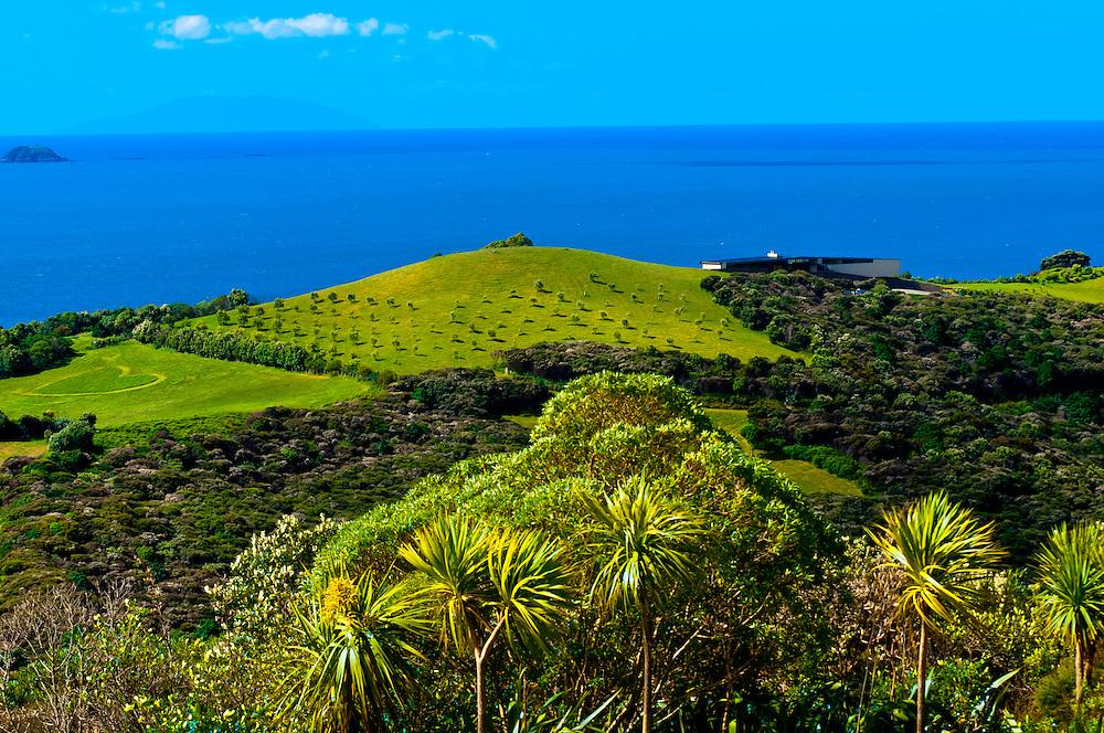 Waiheke Island, Hauraki Gulf, near Auckland, New Zealand