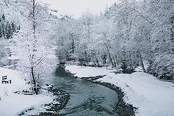THEMENBILD - ein Bach fließt durch winterlich verschneite Baumlandschaft, aufgenommen am 29. Jänner 2020 in Kaprun, Oesterreich // a stream flows through a wintery snowy tree landscape, in Kaprun, Austria on 2020/01/29. EXPA Pictures © 2020, PhotoCredit: EXPA/Stefanie Oberhauser