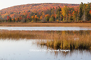 64776-01417 Pond and fall color Alger County Upper Peninsula Michigan