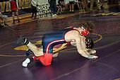 Bronson wrestling tourny 2020