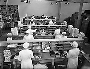 12/11/1957<br /> 11/12/1957 <br /> 12 November 1957<br /> <br /> Special at Urneys Chocolate Factory, Tallaght