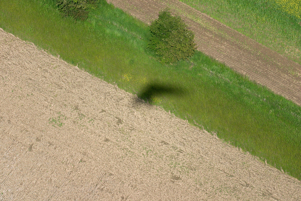 Aerial view of a green field with the shadow of a microlight flying above