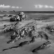 Tide Pools And Arch Rock - Corona Del Mar -  Dusk - Black & White