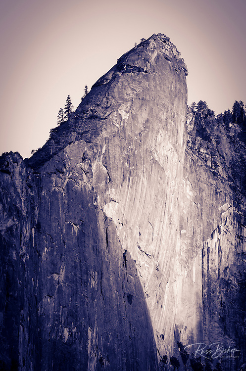 The Leaning Tower, Yosemite National Park, California USA