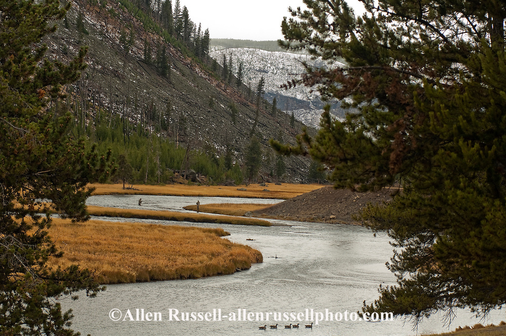 Fly Fishermen, Madison River, Madison Junction, Yellowstone National Park