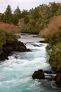 Turquoise rapids and golden autumn colours complement each other at Huka Falls, Lake Taupo