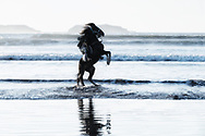 Horse rider at the beach.