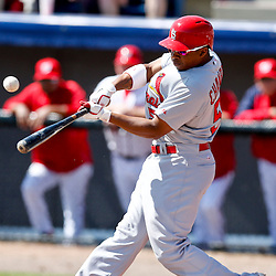 Mar 8, 2013; Melbourne, FL, USA; St. Louis Cardinals center fielder Adron Chambers (56) lines out against the Washington Nationals during the top of the first inning of a spring training game at Space Coast Stadium. Mandatory Credit: Derick E. Hingle-USA TODAY Sports