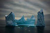 Antarctic & Southern Ocean Nature & Wildlife