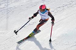 Ursula Pueyo Marimon, Women's Giant Slalom at the 2014 Sochi Winter Paralympic Games, Russia