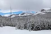 Fresh snow scene of Grand Teton National Park in early spring.