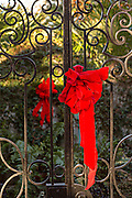 Christmas bows decorate an ironwork gate in historic Savannah, GA.