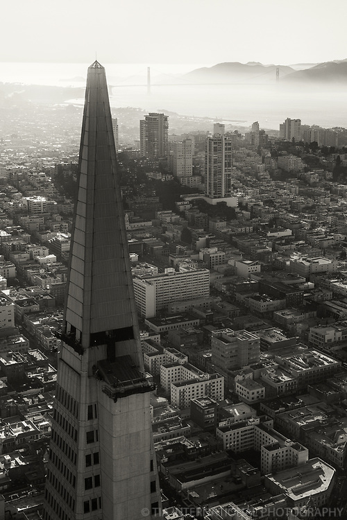 Transamerica Pyramid & Golden Gate Bridge II (monochrome)