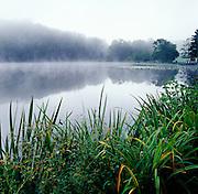 Mist on Canton Lake