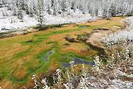 La nieve no llega a cuajar en este arroyo de agua termal, Yellowstone NP, Wyoming (Estados Unidos)