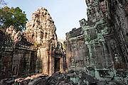 Angkor temple (Cambodia)