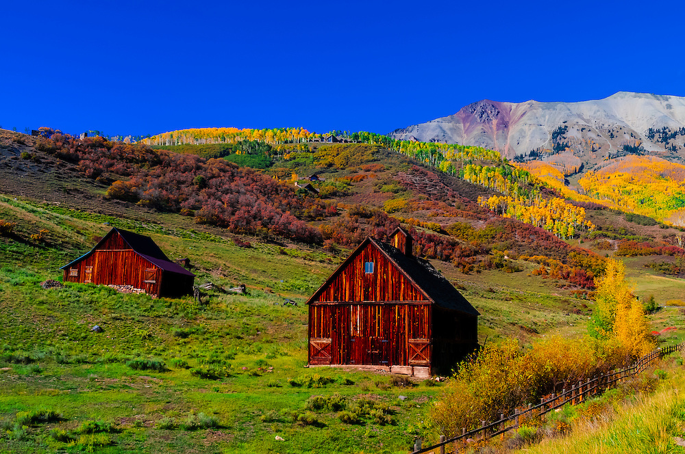 Fall color, near Telluride, Colorado USA.