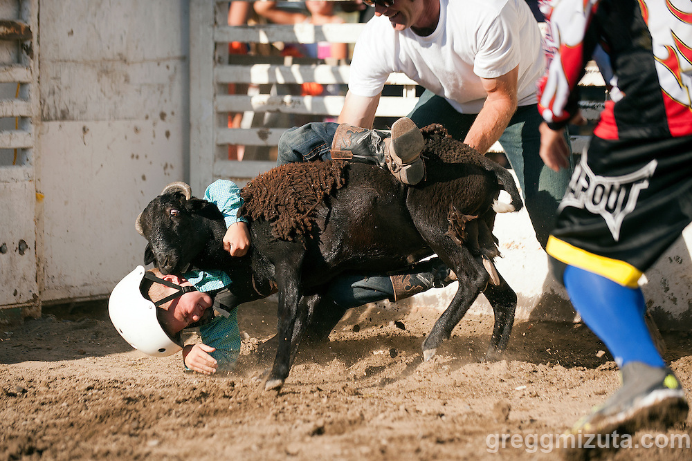 Mutton Bustin'. Vale 4th of July Rodeo, Vale Rodeo Arena, Vale, Oregon, July 3, 2015.