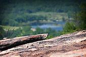 Bear Mountain, NY
