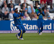 Sanath Jayasuriya catches David Hussey during the ICC World Twenty20 Cup match between Australia and Sri Lanka at Trent Bridge, Nottingham. Photo © Graham Morris (Tel: +44(0)20 8969 4192 Email: sales@cricketpix.com)