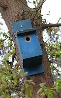 MOLENSCHOT - 150 meter markering dmv  blauw  vogelhuisje . COPYRIGHT KOEN SUYK