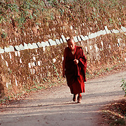 A Tibetan monk walks up a path in Dharamsala, India, in 11/91.