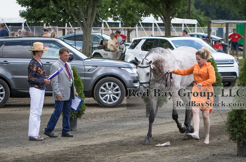Sharon White (USA) presents Cooley On Show and possibly her left foot to the ground jury during Horse Inspection at the 2016 Land Rover Great Meadow International on Friday, July 8, 2016, at the Great Meadow Foundation in The Plains, VA