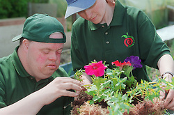 Man with Downs Syndrome and supervisor at work on community allotment project planting flowers in plant basket,