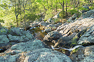 This is one of many small cascades above Mina Sauk Falls. The waterfall below this is the tallest in Missouri at 132 feet.<br /> <br /> Date Taken: May 6, 2014