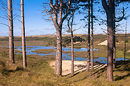 Europa, Niederlande, Zeeland, Naturpark Oranjezon bei Vrouwenpolder auf Walcheren, ehemaliges Trinkwassergewinnungsgebiet.<br /> <br /> Europe, Netherlands, Zeeland, nature park Oranjezon near Vrouwenpolder on the peninsula Walcheren, former drinking water abstraction area.