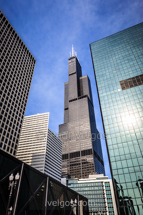 Chicago downtown city buildings with Willis Tower (Sears Tower)