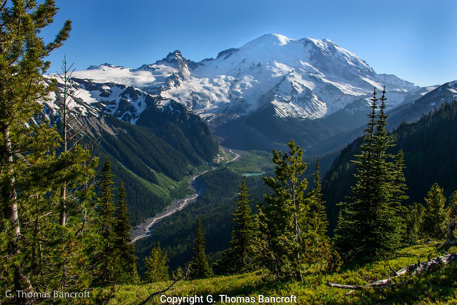 The Emmons Glacier flows down the east side of Mt Rainier and forms the headwaters of the White River.