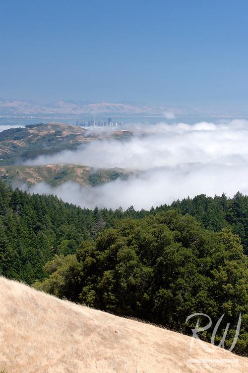 Marin Headlands Transpression Ridges Fog and Downtown San Francisco City Skyline, Mount Tamalpais State Park, California