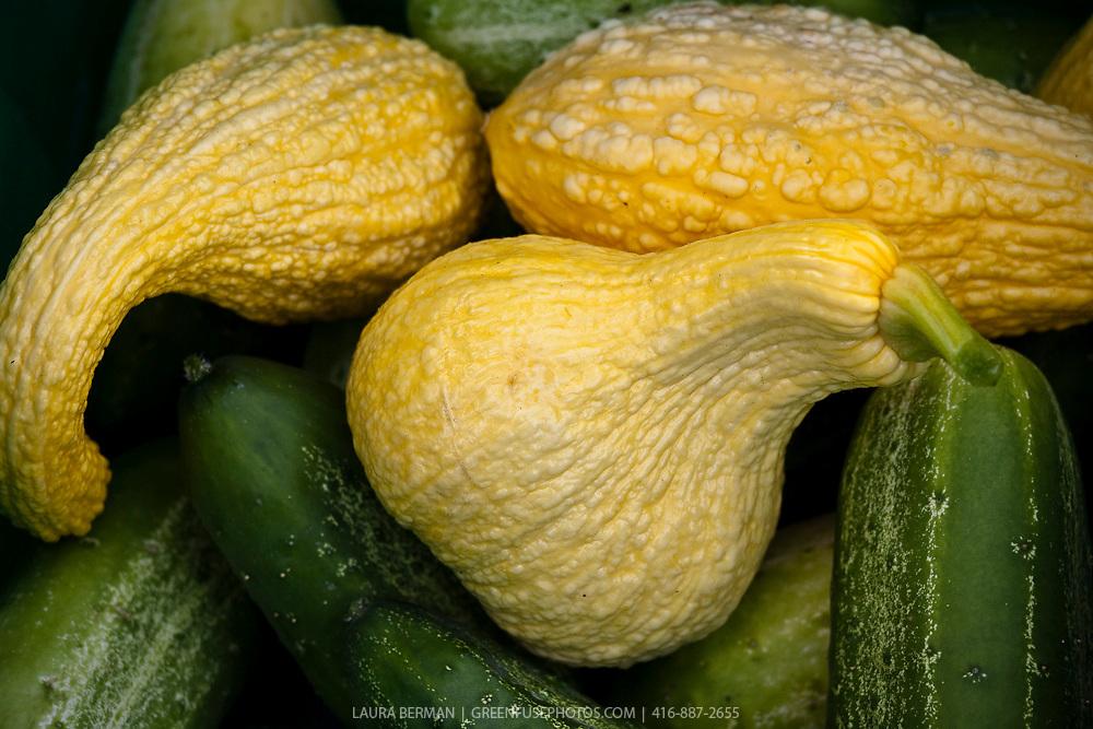 Yellow crookneck squash at a farmers market.