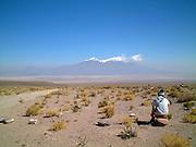 gazing into the distance, altiplano, uyuni, bolivia, south america