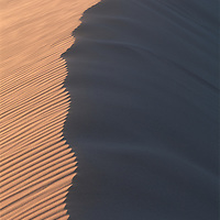 Africa, Namibia, Namib Desert, Setting sun lights curving sand dunes near coastal city of Walvis Bay