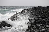 Giant's Causeway basalt landscape Northern Ireland, Unesco Heritage site