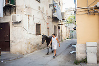 PALERMO, 29 LUGLIO 2015: Un abitante del quartiere Borgovecchio cammina con un cavollo nelle vie del quartiere, nei pressi della Parrocchia di Santa Lucia Borgovecchio, a Palermo il 29 luglio 2015.