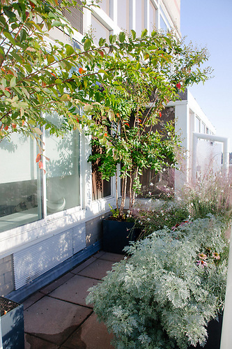 Landscape And Garden Design Projects