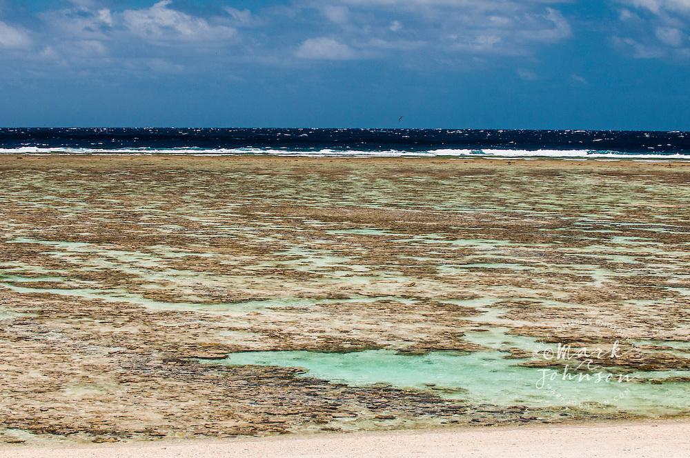 Reef flat at low tide, Lady Elliot Island, Great Barrier Reef, Queensland, Australia